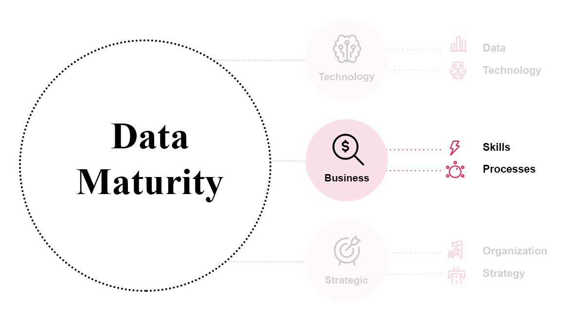 Data Maturity: Perspektive Business