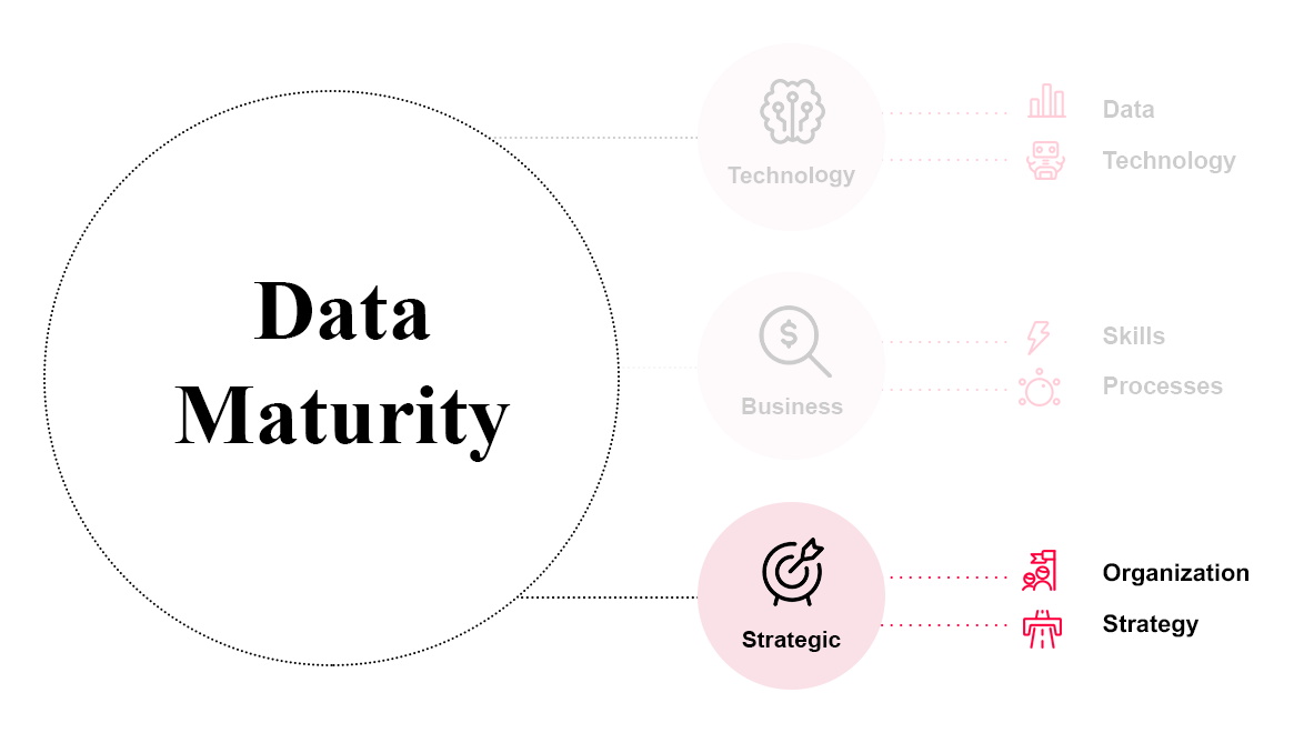 Data Maturity Referenz